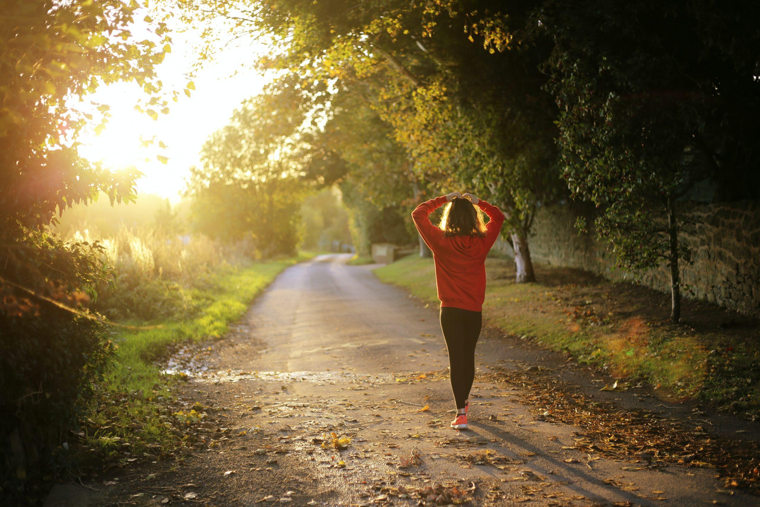 jogger walked on empty rural road, sunlight, trees